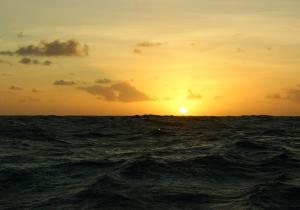 stage-transat-catamaran-coucher-soleil-atlantique